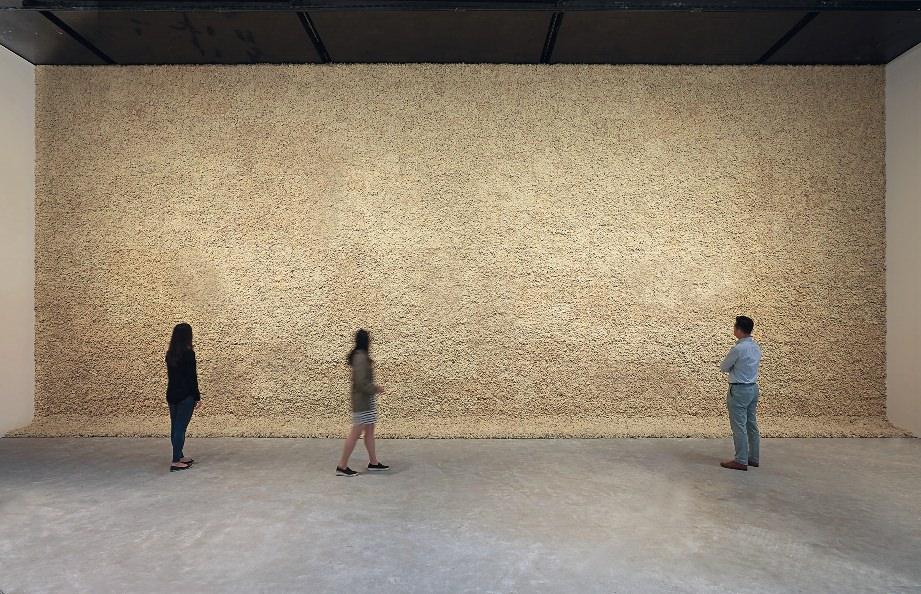 olafur eliasson, moss wall, 1994, all images © hyunsoo kim