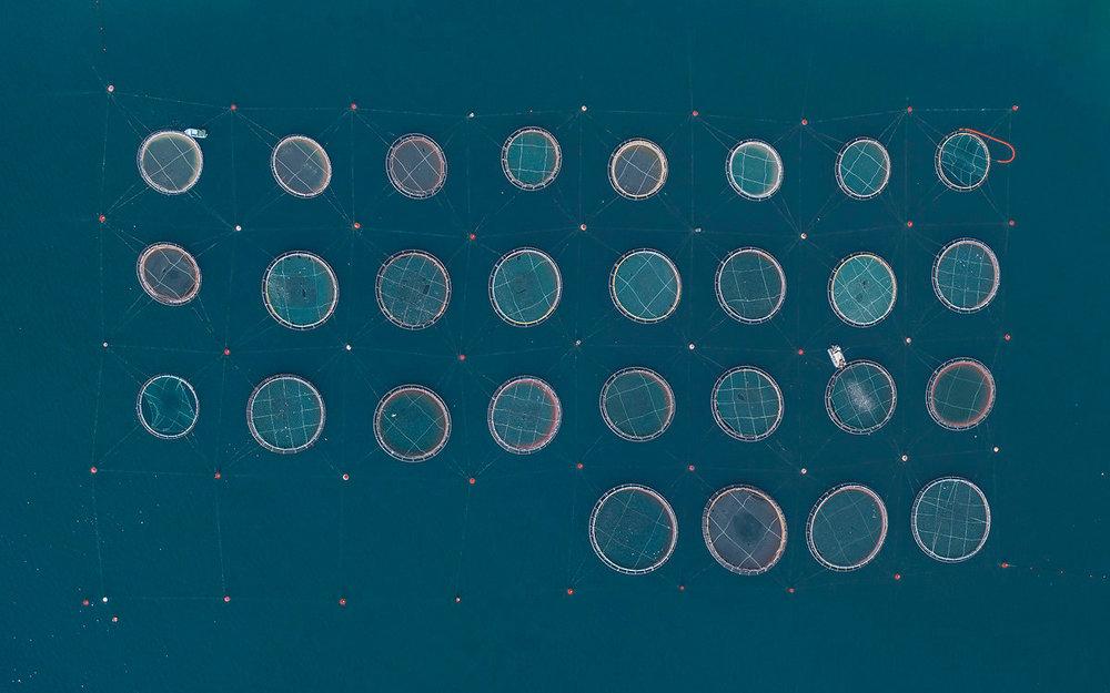 bernhard-lang-fotografia-aerea-serie-fish-farms-04