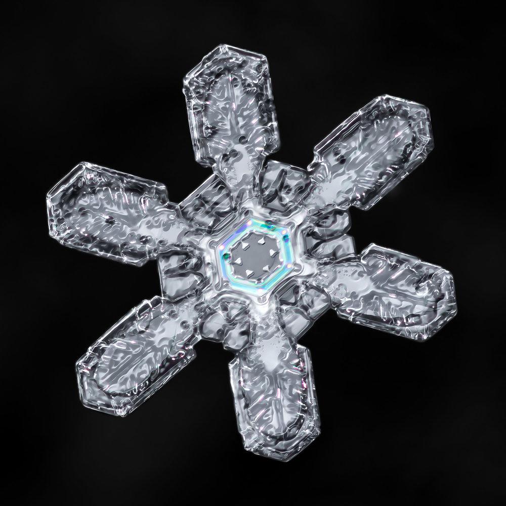 macro-snowflake-03.jpg