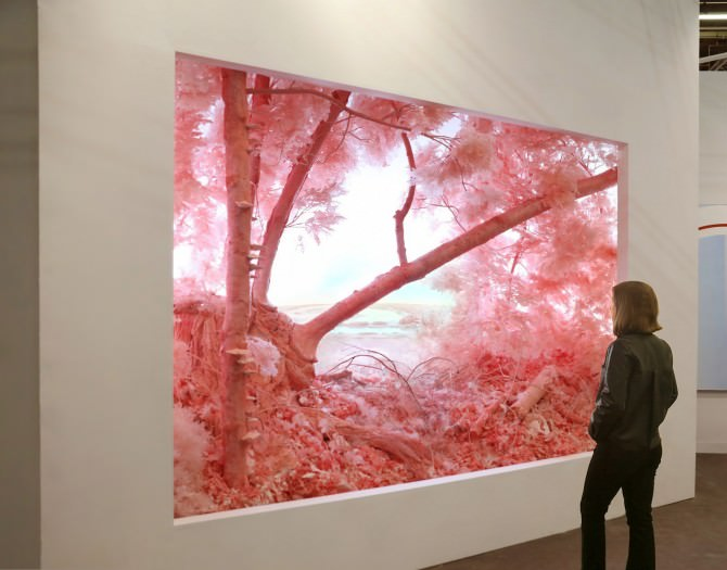 Patrick Jacobs, Pink Forest, 2018  (335 x 457 x 320 cm). Paper, foam, clay, aluminum, styrene, epoxy, glue, polyurethane, acrylic paint, wood, lighting, fabric.