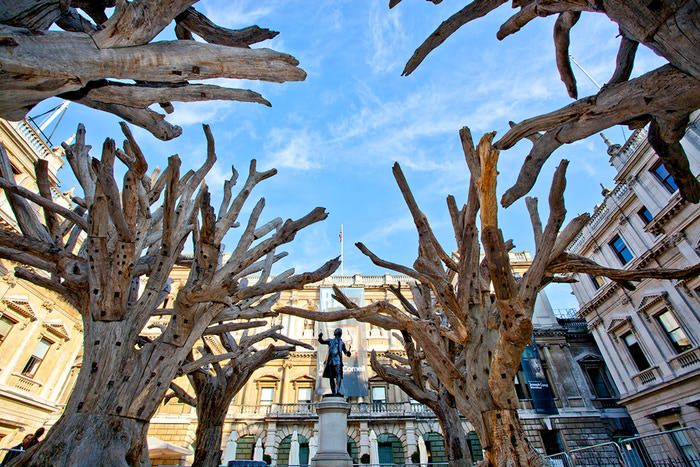 Image: Ai Weiwei, Tree, 2009-10, 2015. Installation at the Royal Academy of Arts, London 2015. Photo: Fraser Marr.