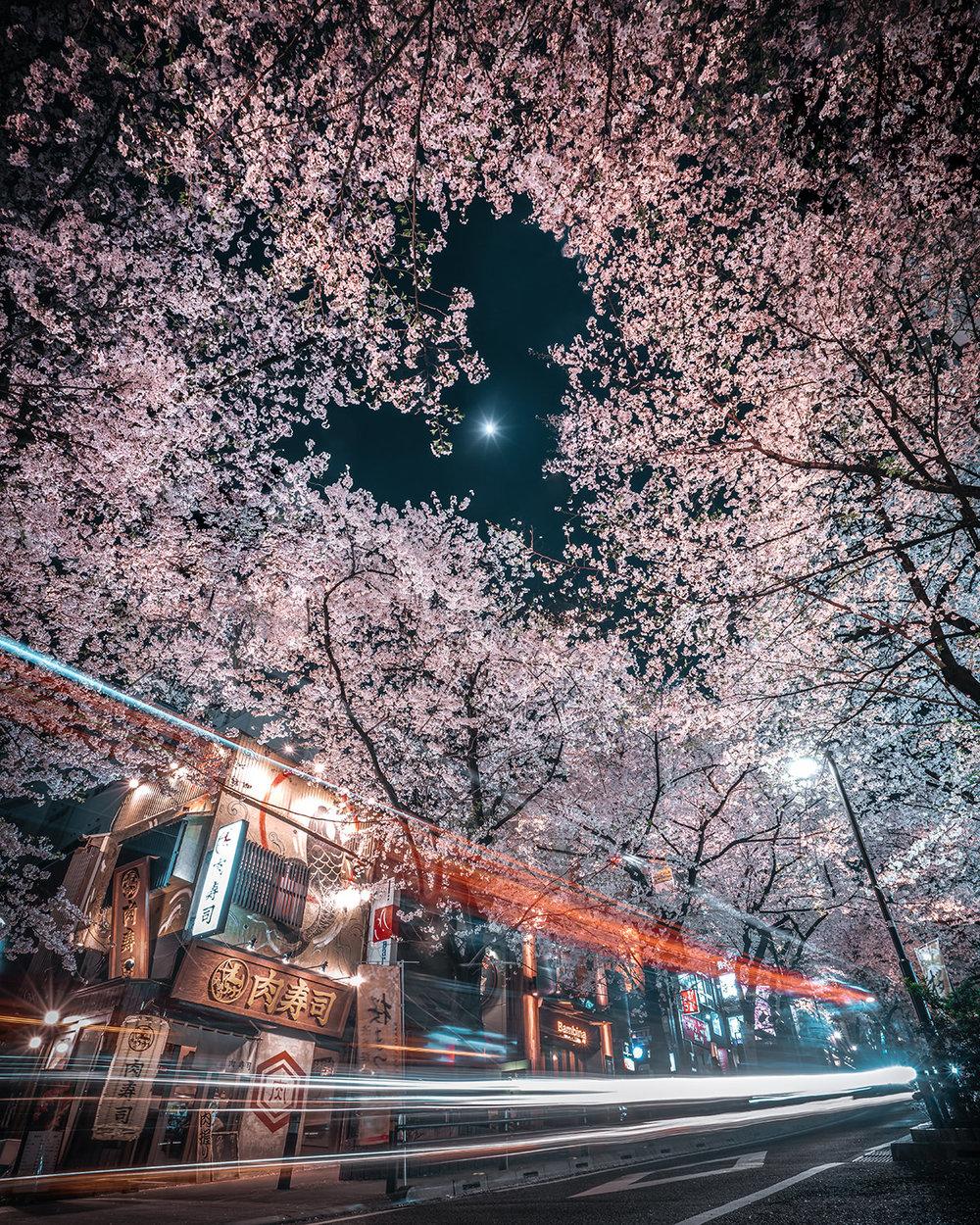 RK-street-foto-giappone-05jpg.jpg
