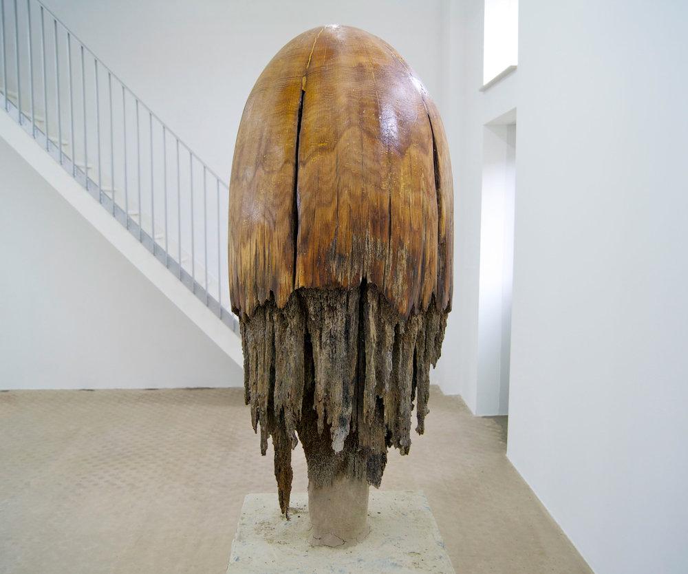 Giorgio Andreotta Calò; Medusa, 2014; Legno di rovere, argilla. Courtesy Wilfried Lentz, Rotterdam. Foto: John Bohnen