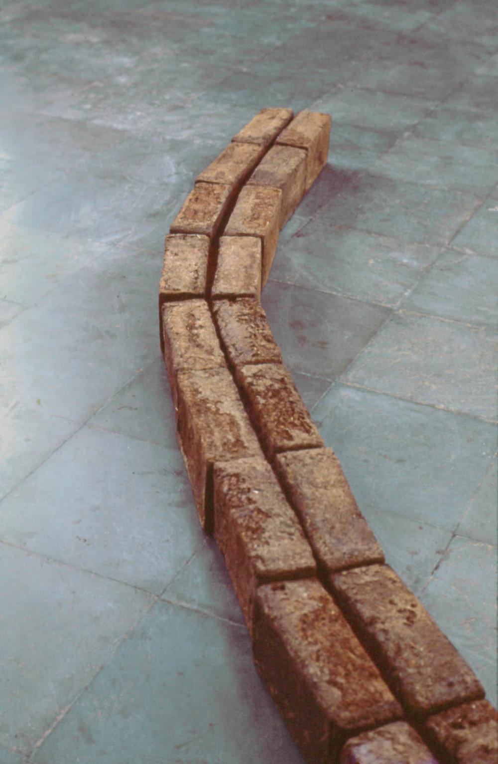 Sheela Gowda; Mortar Line, 1996 (dettaglio). Courtesy dell'artista