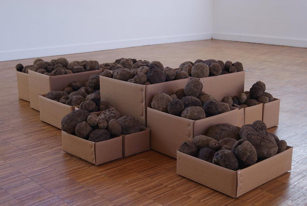Sheela Gowda; Stock, 2011; Collezione Masureel, Belgio. Courtesy dell'artista