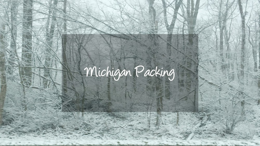 simply-linked-designs_michigan-packing_cover-image.jpg