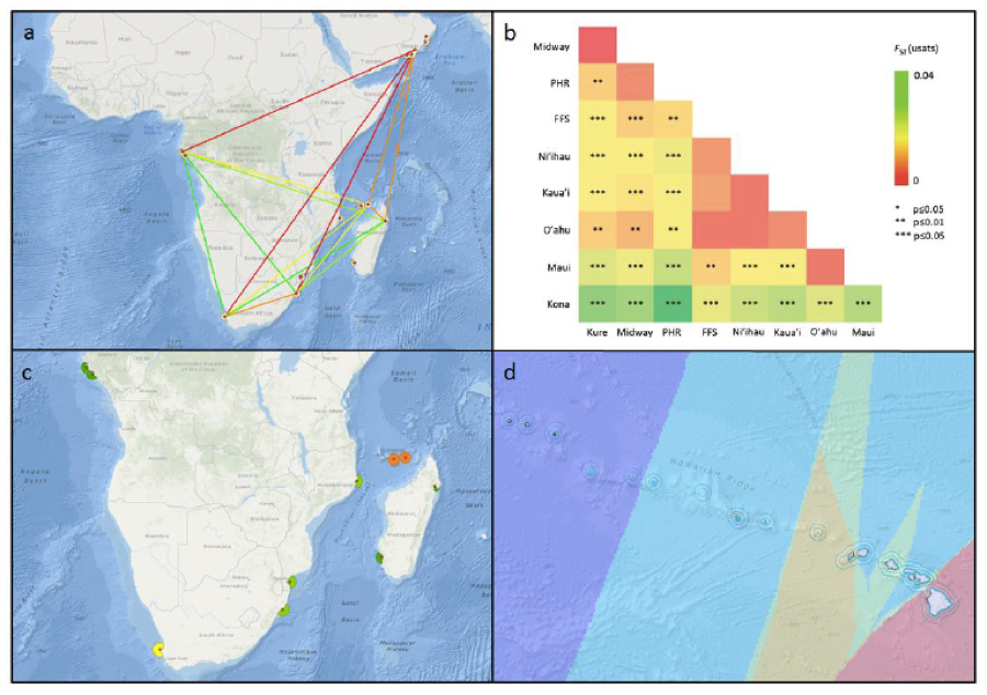 Four examples of geospatial genetic data layers and graphical analytics from case studies developed in SeaSketch: Genetic connectivity (a) and genetic diversity (c) of humpback whales off Africa; and pairwise (b) and interpolated (d) population differentiation of spinner dolphins in Hawaii. Adapted from IUCN-MMPATF (2016).