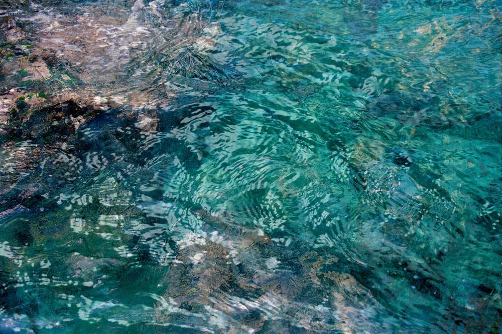 tide pool 11.jpg