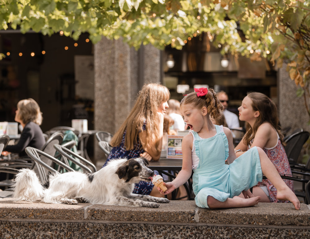 all that! dancer Harper (age 7) sharing her ice cream with rescue dog sawyer at the springfield public house. photo by liz hults of hults photography.
