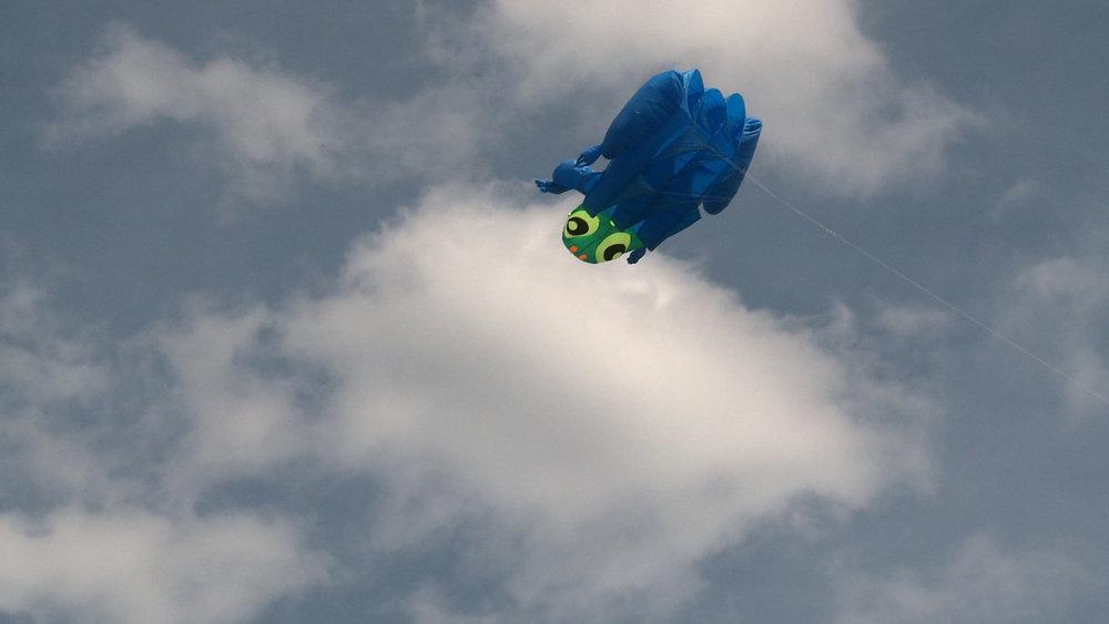 frog clouds kite.jpg