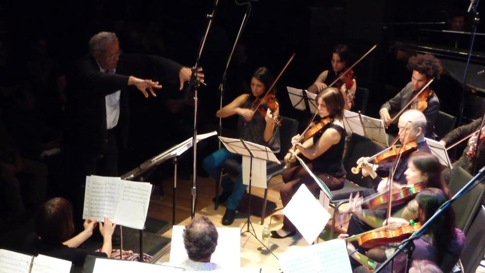 Concertmaster Trillium J.jpg