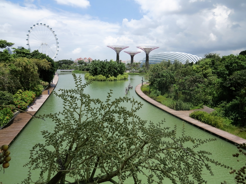 Singapore Flyer, Supertrees and Flower Dome