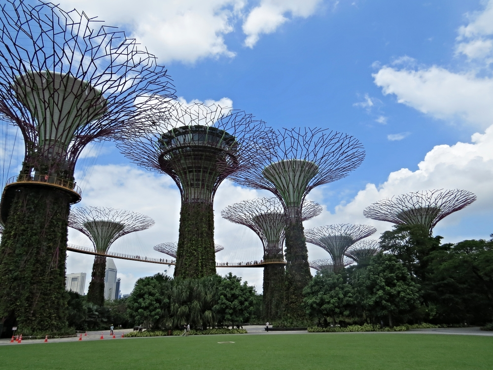 Supertree Grove and Skyway
