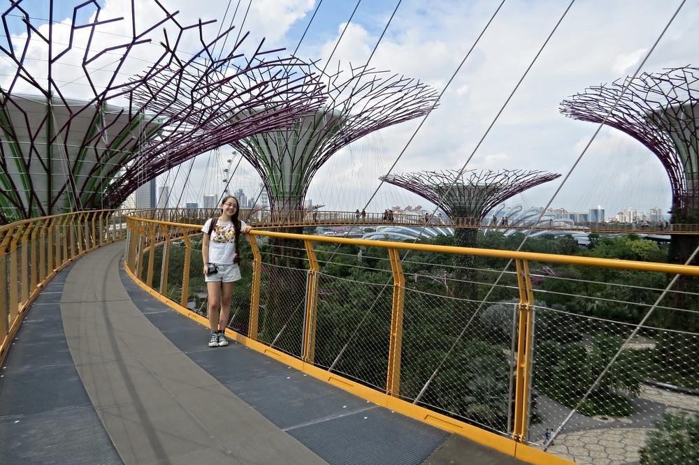 Skyway in Supertree Grove