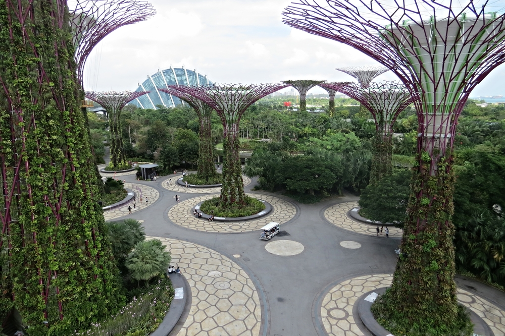 Supertree Grove with Cloud Forest Dome in background
