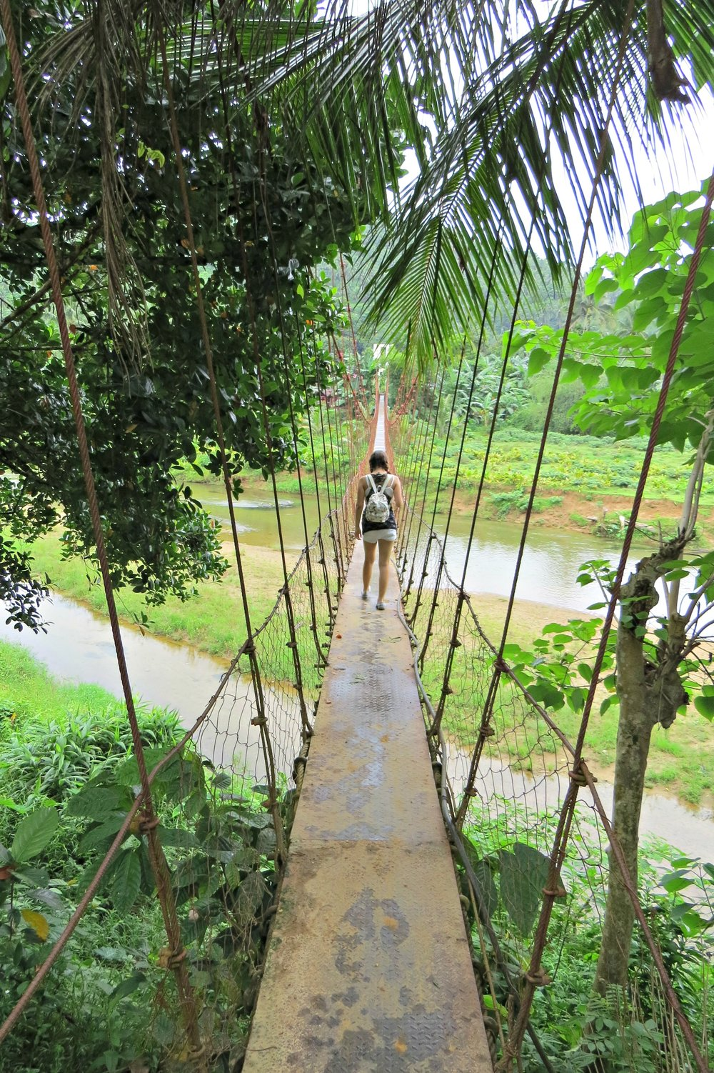 Calsara hanging Bridge