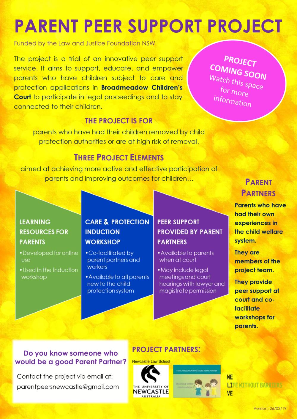 PPSP_agency-practitioner flyer_v260319.docx.png