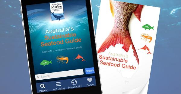 australian-marine-conservation-sustainable-seafood-blue-film