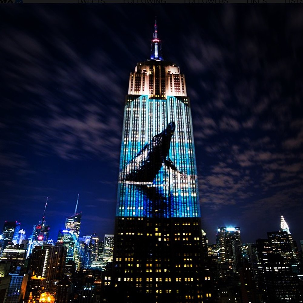 Whale projection on the Empire State Building