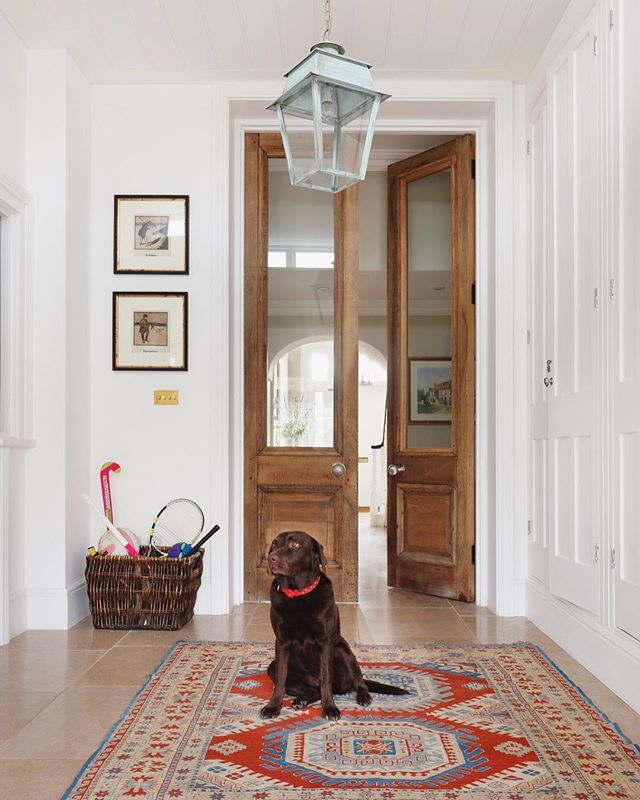 Our lovely clients 🐶 models for us in our latest project, a Georgian Manor House in Hertfordshire. Here Nick found some rather enormous reclaimed doors to add character to part of the boot room area. The glazed panels allows the light to stream through from the entrance hall.. #coco the #chocolatelab #doglovers #bootroom #reclaimeddoors #reclaimed #oldwood #bootroomdesign #countryhome #haminteriors #designinspo #countrylife #familyhome