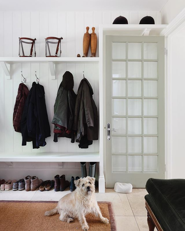 Keeping it simple in the boot room of our Buckinghamshire project 🌳. . . #modelledBYnipper🐶 #countryhousestyle #englishinteriors #bootroom #mudroom #englishhome #haminteriors #terrierlove #dogsathome