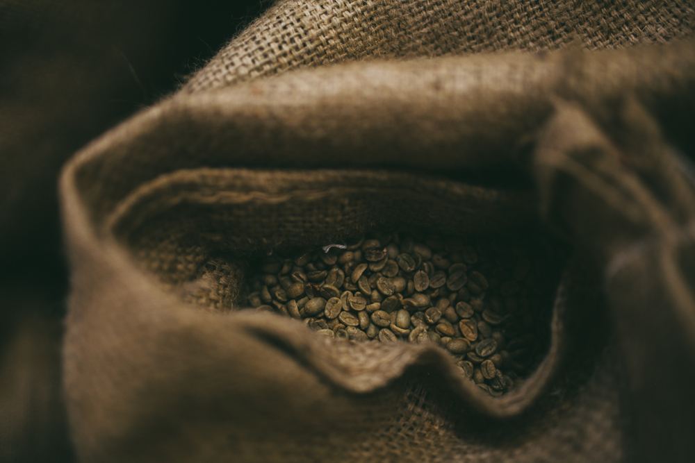 Tropic Coffee Practice Shots-14.jpg