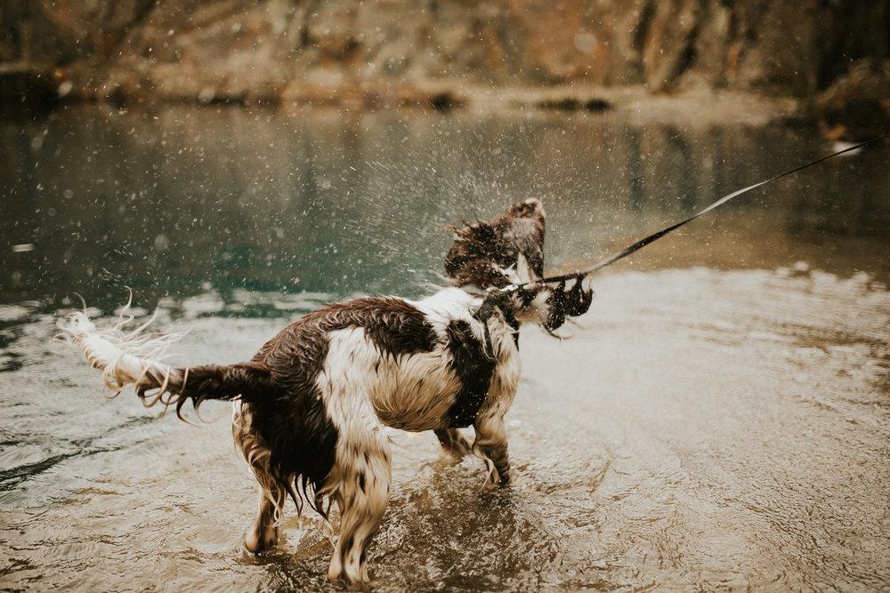 Snowdonia-Wales-Log-Cabin-Garthyfog-Darina-Stoda-Photography-1.jpg