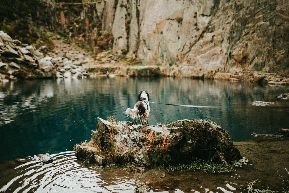 Snowdonia-Wales-Log-Cabin-Garthyfog-Darina-Stoda-Photography-2.jpg