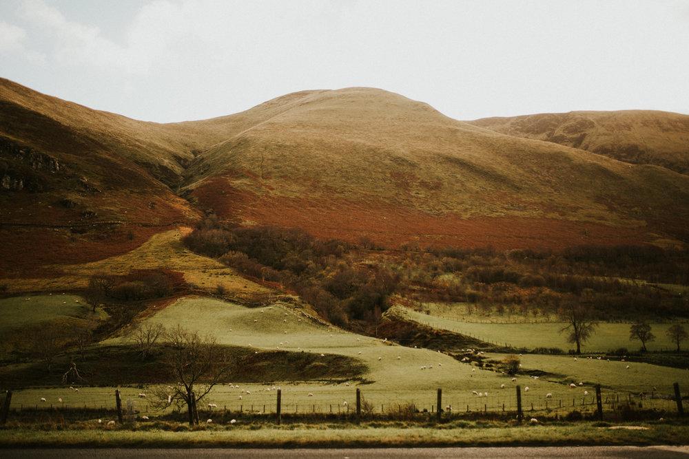 Snowdonia-Wales-Log-Cabin-Garthyfog-Darina-Stoda-Photography-33.jpg