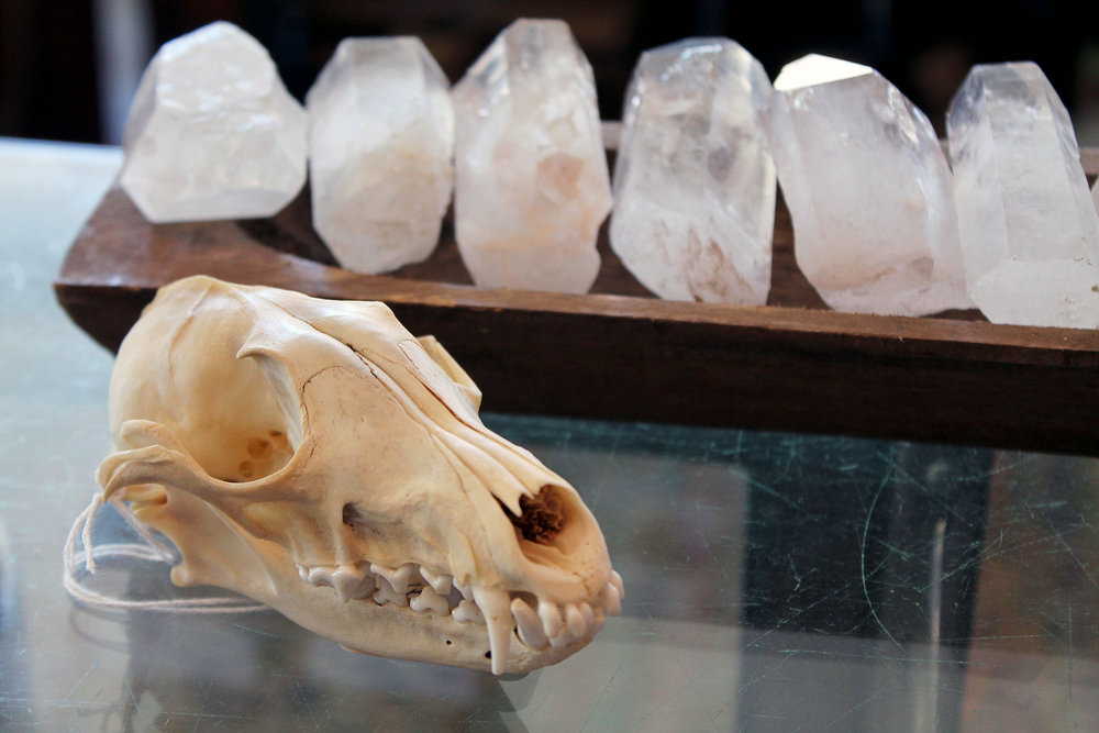 Fine skull and crystal specimen