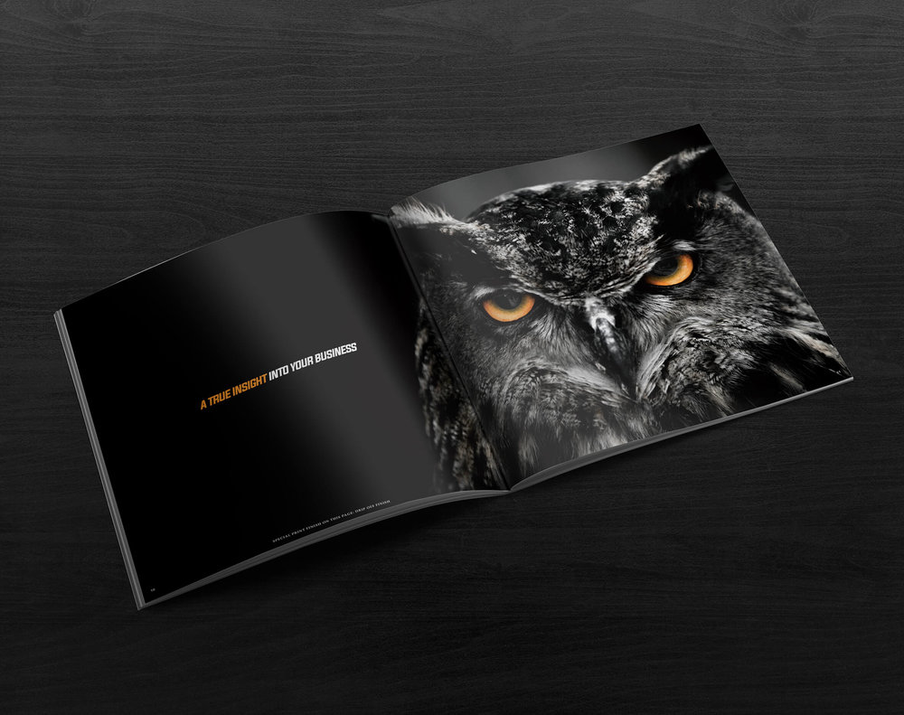 PCP Brochure inside5.jpg