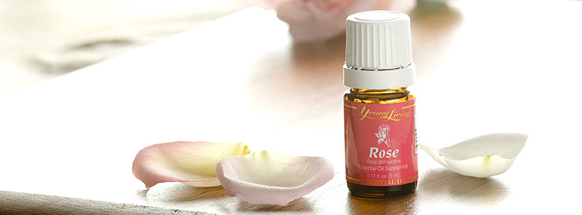 MOST PRECIOUS ROSE ESSENTIAL OIL