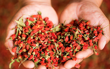 Dried NingXia Red Berries