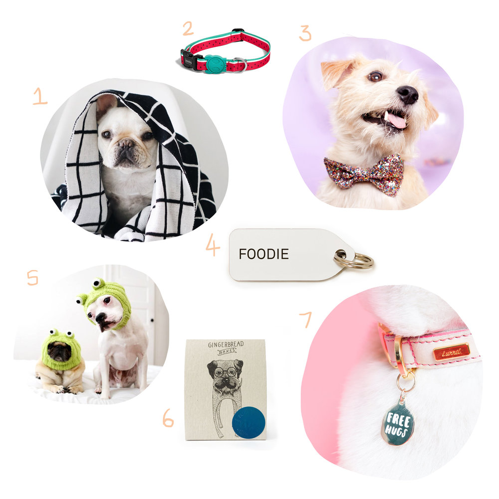 gift-ideas-for-dogs1.jpg