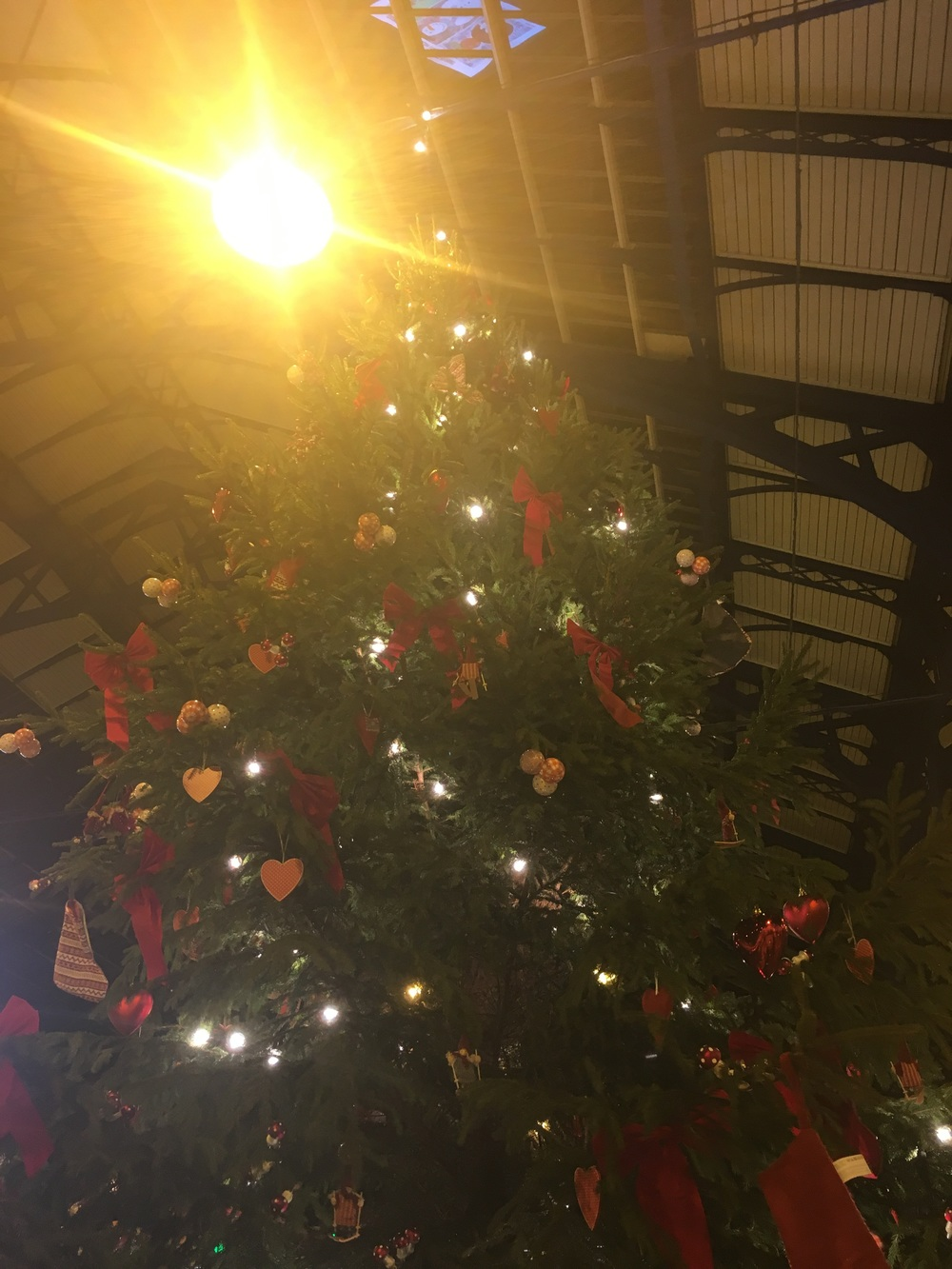 Brighton Station Christmas Tree