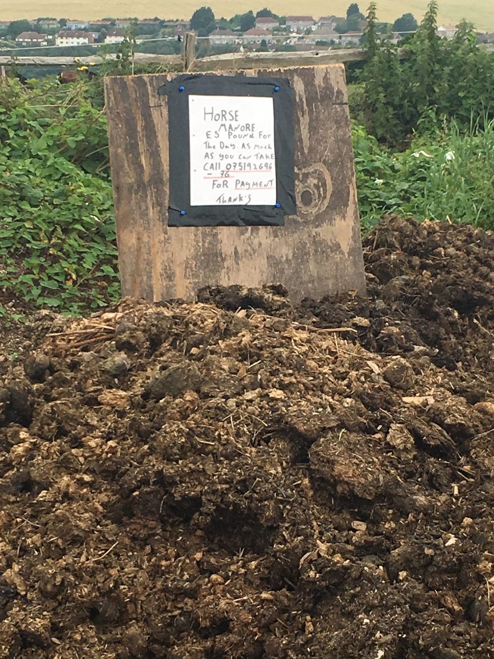 Horse manure for sale - as found on my walk today