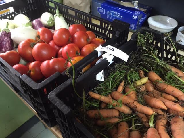 Fresh Veggies from Local Farms