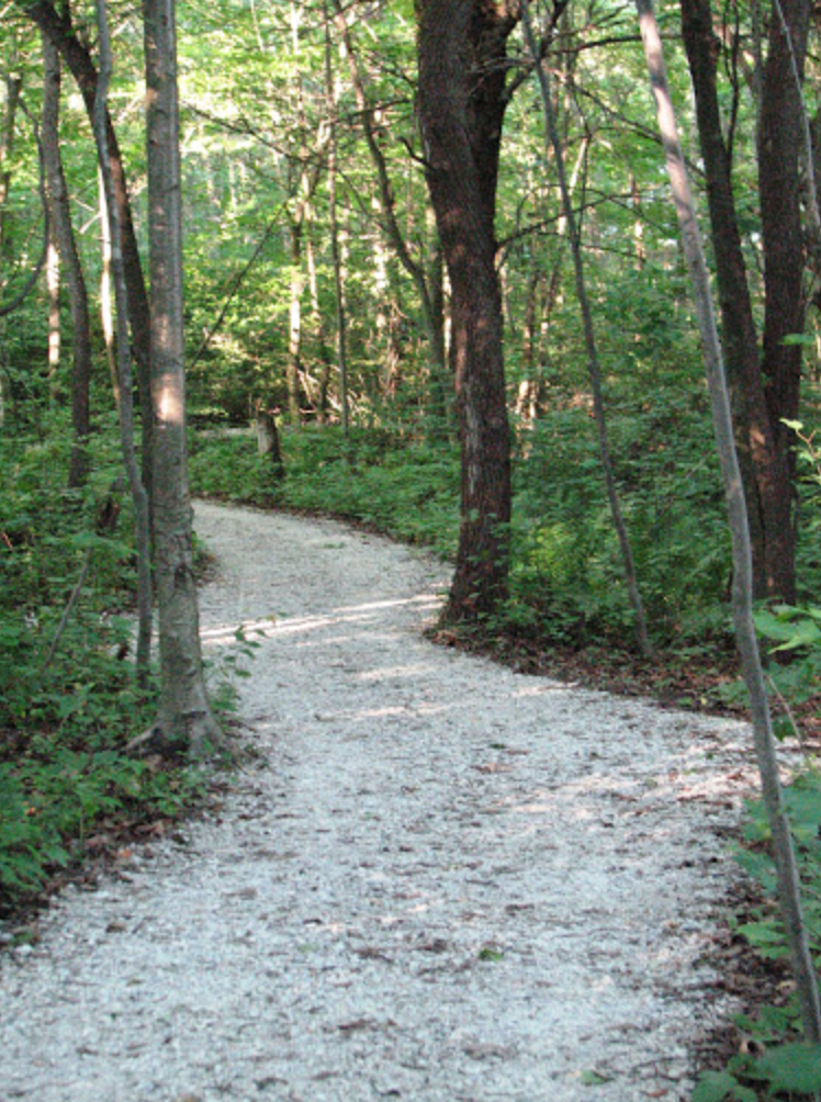 Silver Lake Michigan Silver Star Path .png