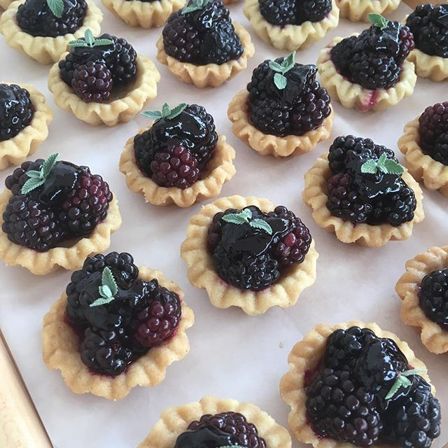 We were very excited to work with Parsons Berry Farm for this years Bounty of the County. We made shortbread crusted tartlets with a honey-butter schmear, a house made blackberry jam, HUGE blackberries and a touch of mint.  Comment below if you tried one at BIG night!  #carltonbakery .. #patisserie #boulangerie #viennoiserie #privateevents #bountyofthecounty #tartlets #parsonsfarm #hugeberries #localfarms #localeats