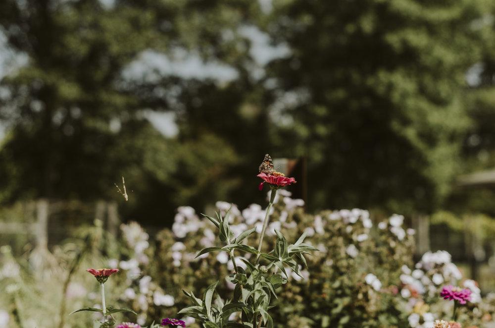CamPhotoDay1 (5).jpg