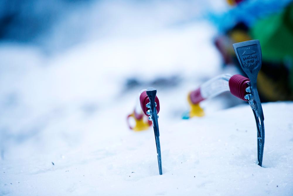 Vinter-isøks.png