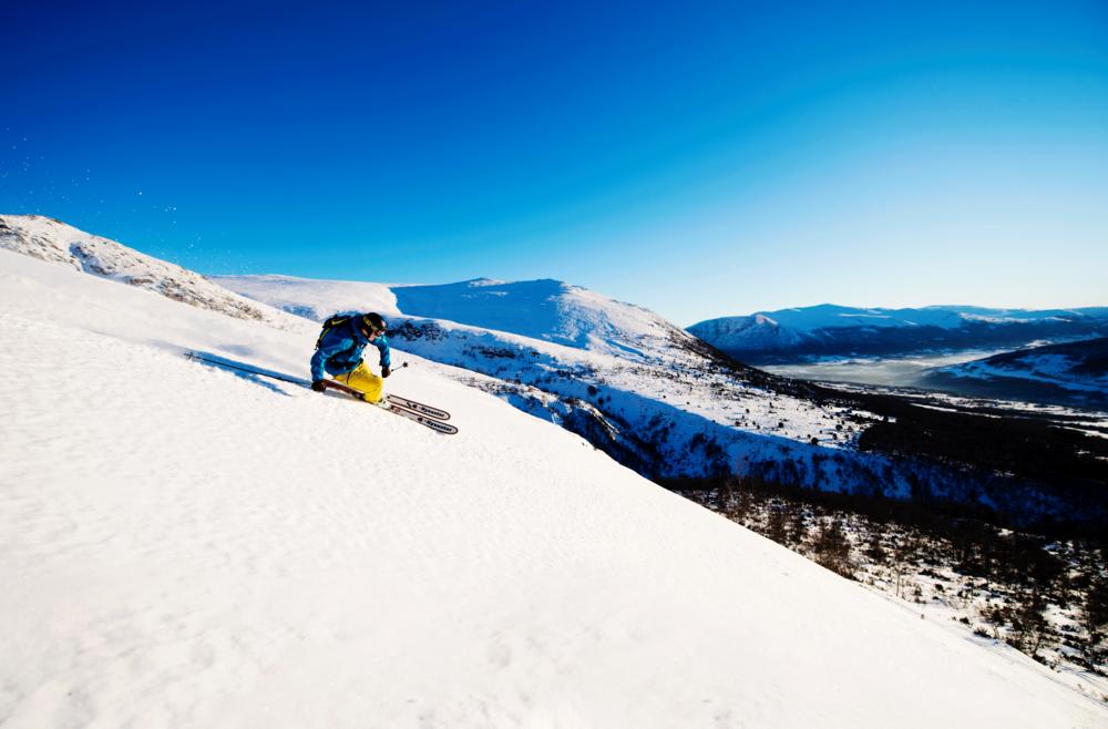 Vinter-ski.png