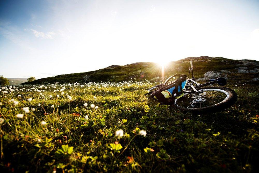 Sykkel 1.jpg