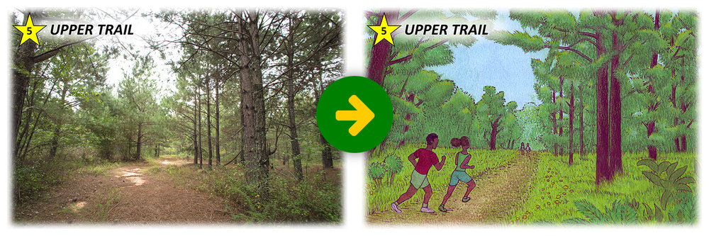 stoapf-vision-before-after-05-upper-trail.jpg