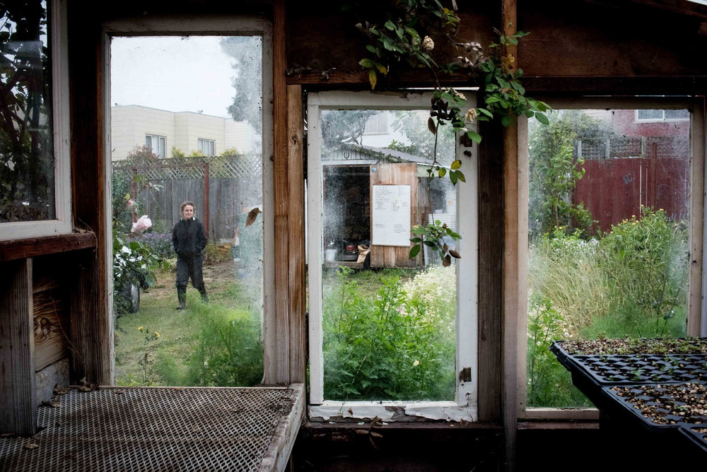 Little City Gardens owner and farmer, Caitlyn Galloway walks over to the greenhouse on Wednesday, June 10, 2015. The farm is the only commercial of its kind in San Francisco.  (Michael Ares/Special to the S.F. Examiner)