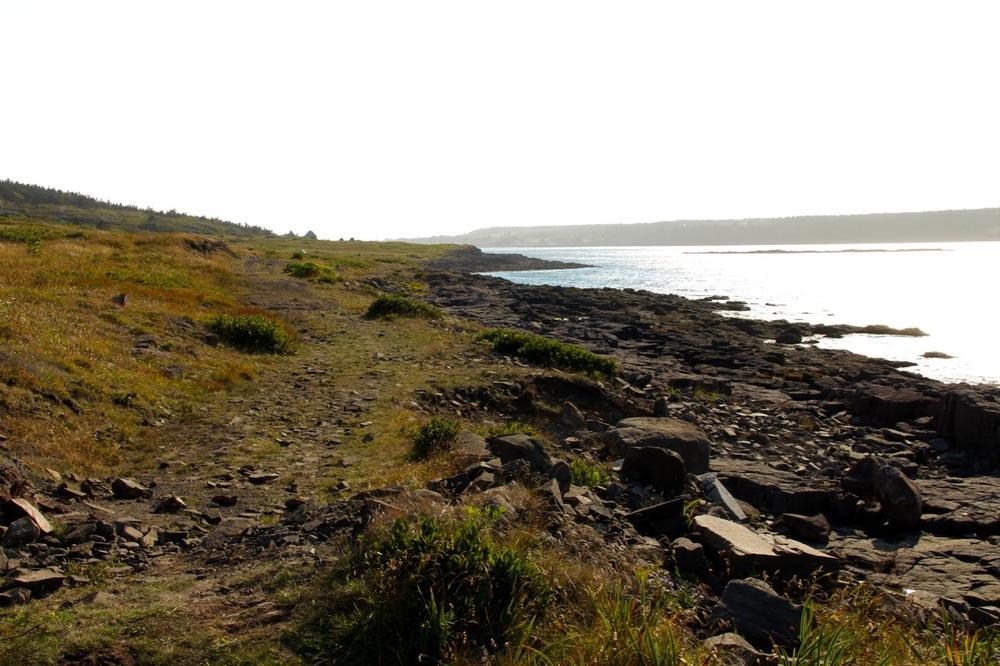Walking the Fundy View Trail in Freeport, Long Island, Nova Scotia