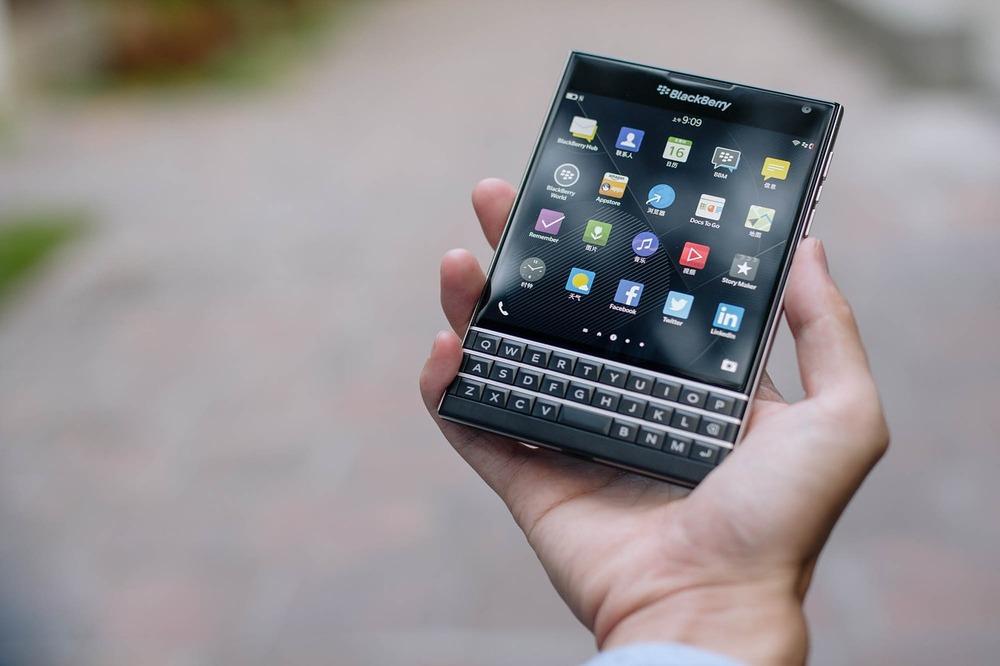 blackberries-1377071_1280.jpg