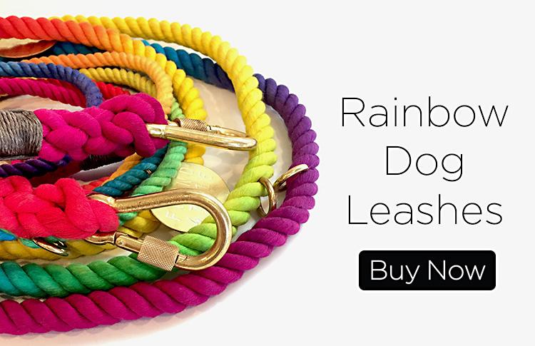 Rainbow Dog Leash
