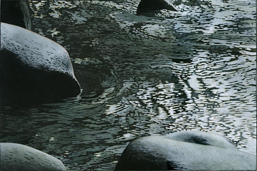 21.web Canyon 8.jpg