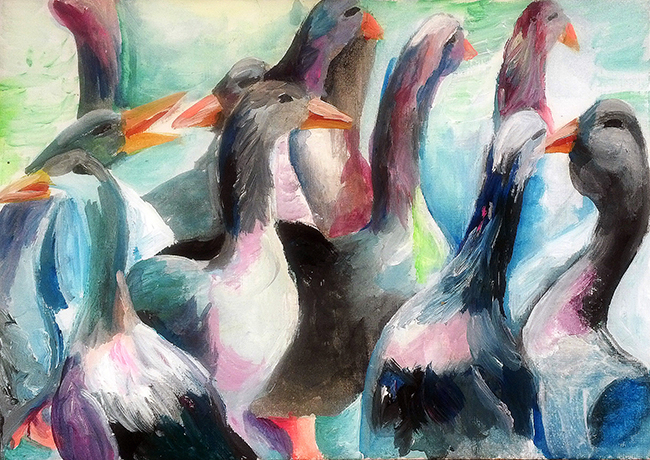 Ducks at Sonya Rikiel
